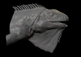 Iguana bust