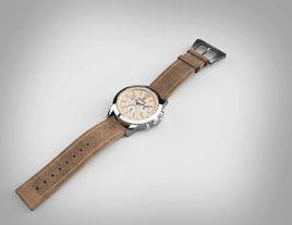 TimberLand Watch