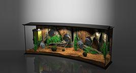 Panoramic Aqua Tank