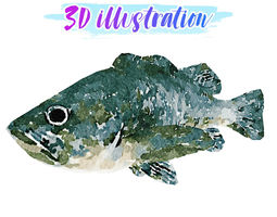 3D asset Low Poly Rockfish Illustration Animated - Game