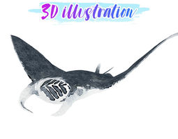 3D asset Low Poly Manta Illustration Animated - Game Ready