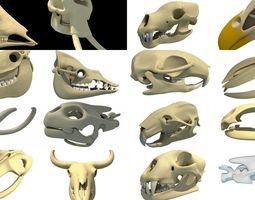 Animal Skull 3D Models Collection