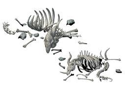 3D model Sea bottom - animal wreckage 06