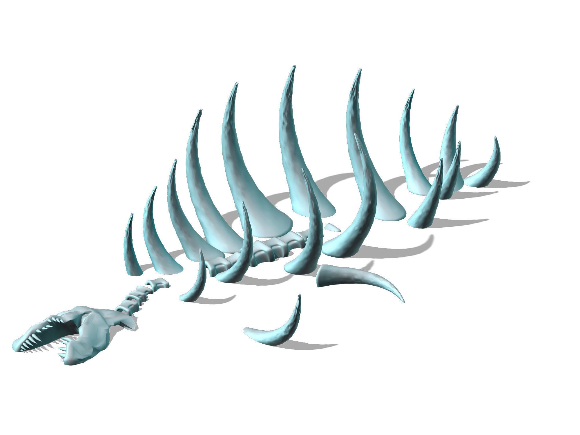 Seabed animal fossil 02