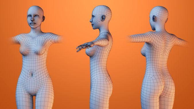 3D woman Human Body Woman   CGTrader