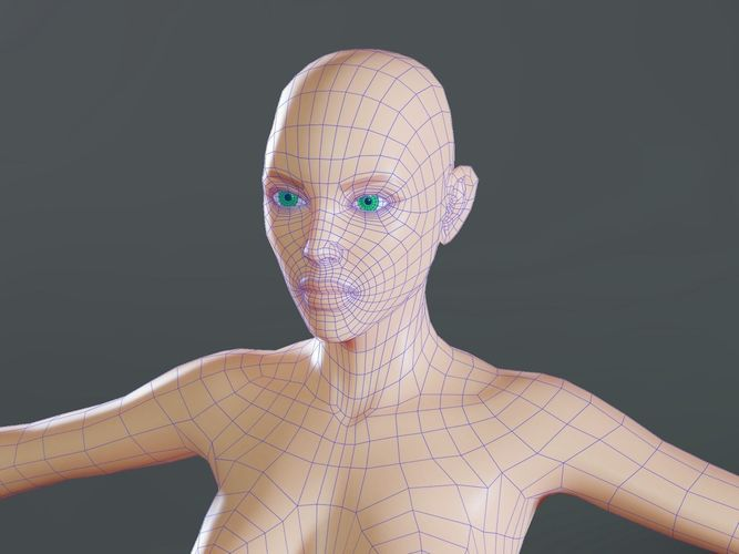 female base mesh topology 3d model obj mtl fbx blend dae tga 1