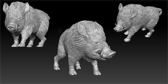 Boar-sculpt