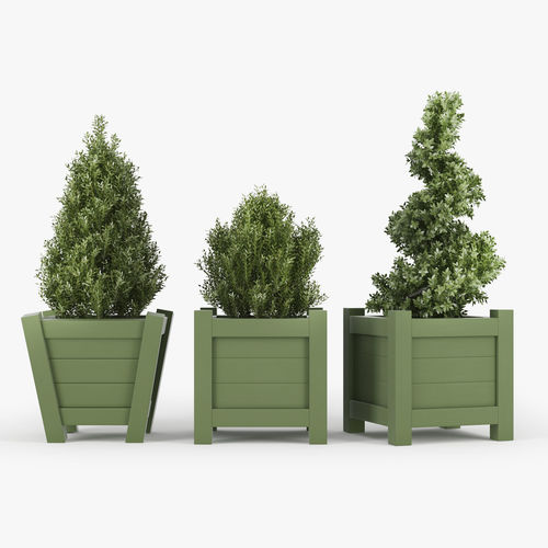 buxus green pot 3d model max obj mtl fbx 1