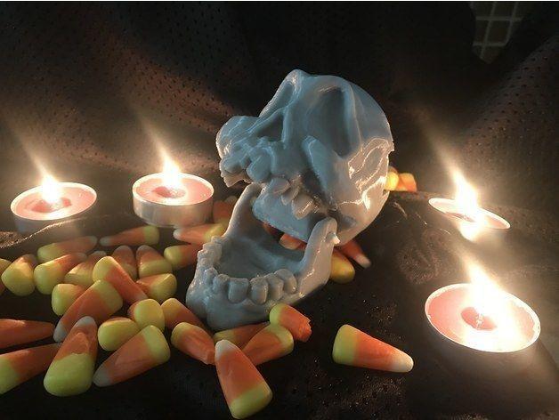 Articulated skull