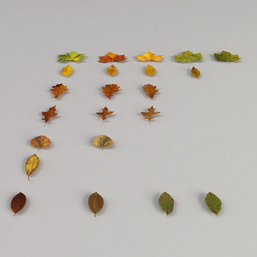dead autumn leaves 3d model max 3ds fbx 1