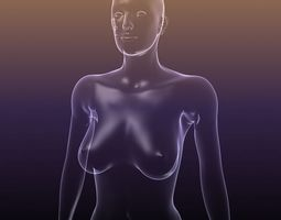 Female body - silhouette of a Woman 3D asset