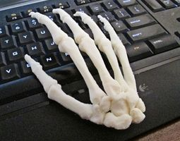 3D print model Human Hand-Right Full Scale assembled