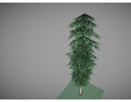 3D asset low poly pine tree