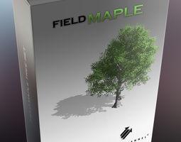 Alpha Channel Studios Field Maple Set 3D model