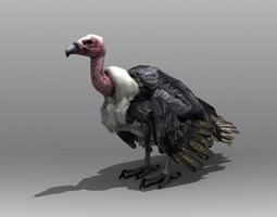 Vulture 3D model