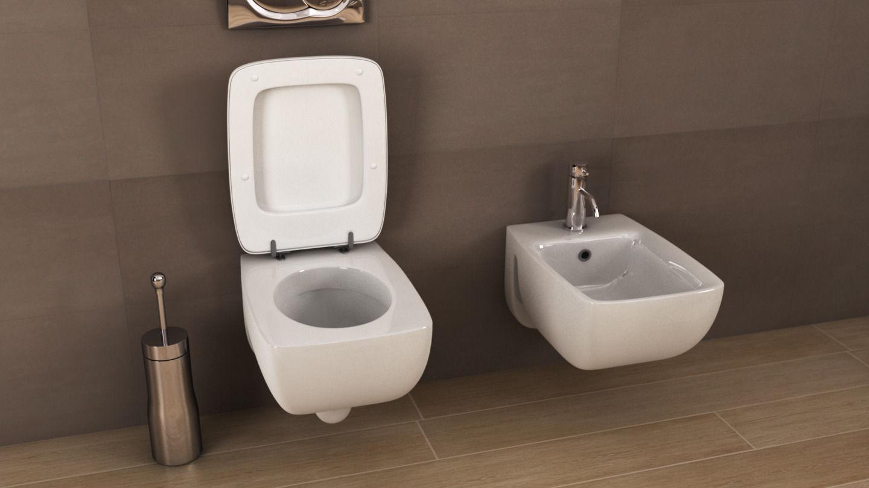 Ideal Standard Cantica Toilet N16 3d Model C4d