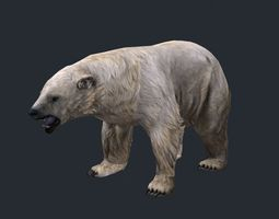 lowpoly polar bear 3d model low-poly max obj fbx