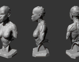 Female bust fi 3D printable model