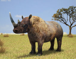 3d black rhinoceros