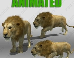 3d lion animated