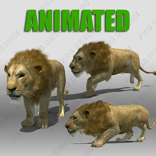 lion animated 3d model rigged animated max fbx 1