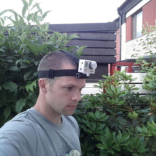 gopro head strap mount 2 3d model stl stp 1