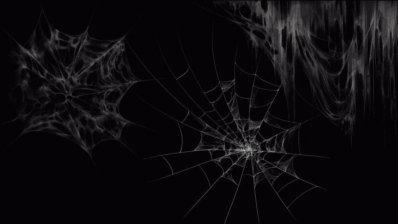 Spider web psd