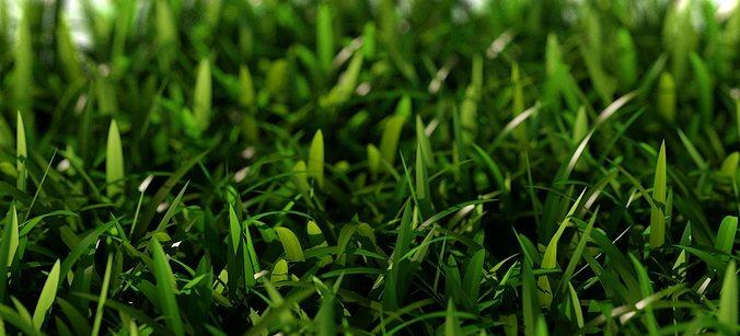 grass short d 3d model max obj mtl fbx 1