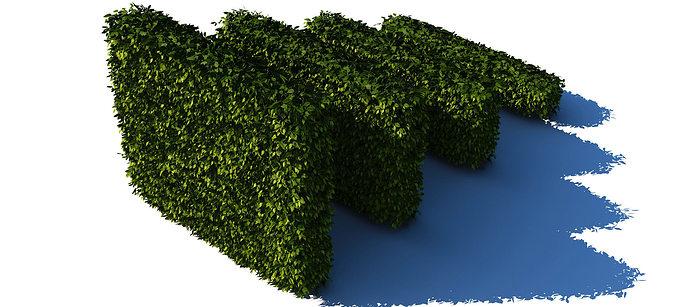 hedges collection 3d model max obj mtl fbx c4d 1
