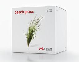 3d beach grass
