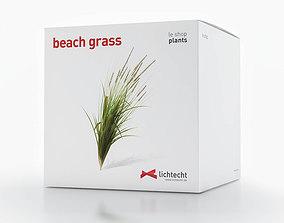 3D model Beach Grass