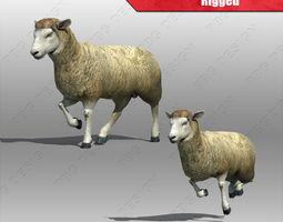 rigged 3d sheep