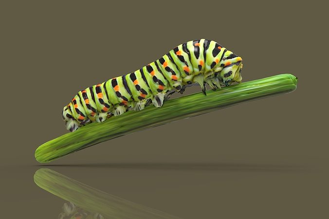 caterpilar - bruco 3d model obj mtl 1