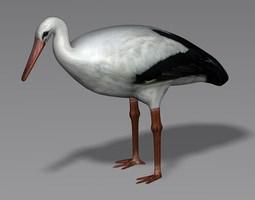 3D Stork