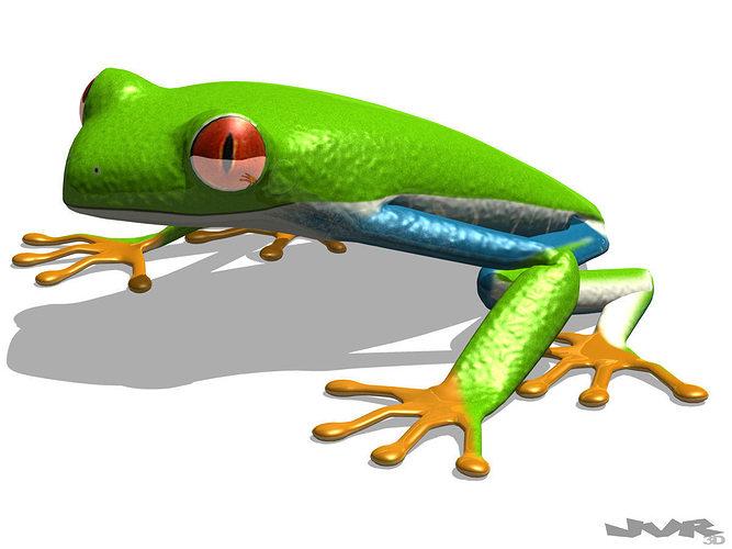 rigged tree frog agalychnis callidryas 3d model rigged max pdf 1