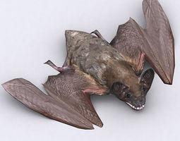 3DRT - Bat 3D Model
