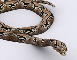 3DRT - Snake 3D Model