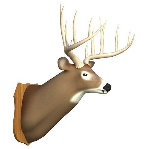 mounted deer trophy 3d model 3ds lwo lw lws 3