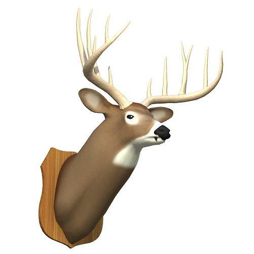 mounted deer trophy 3d model 3ds lwo lw lws 1