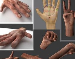 rigged  hands VR / AR ready animated 3d asset