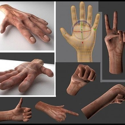 rigged  hands 3d model low-poly rigged animated obj mtl 3ds fbx stl blend dae 1
