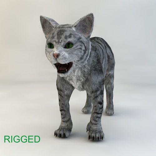 cat rigged 3d model rigged c4d 1