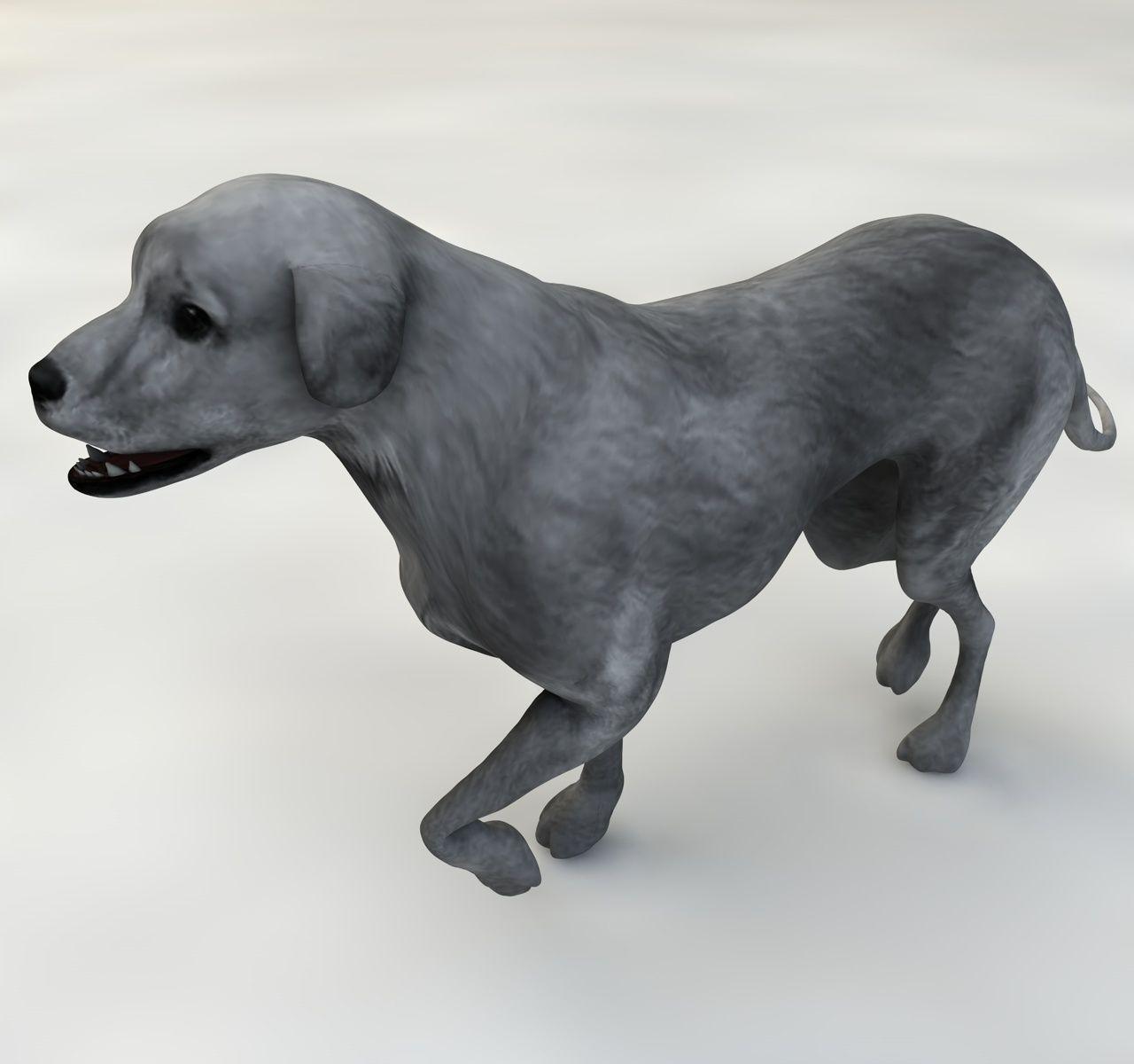 Dog half breed 3d model animated rigged max c4d cgtrader com