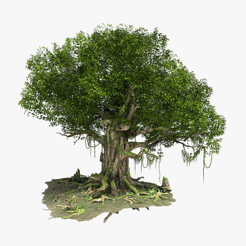 Fantastic Tree Model
