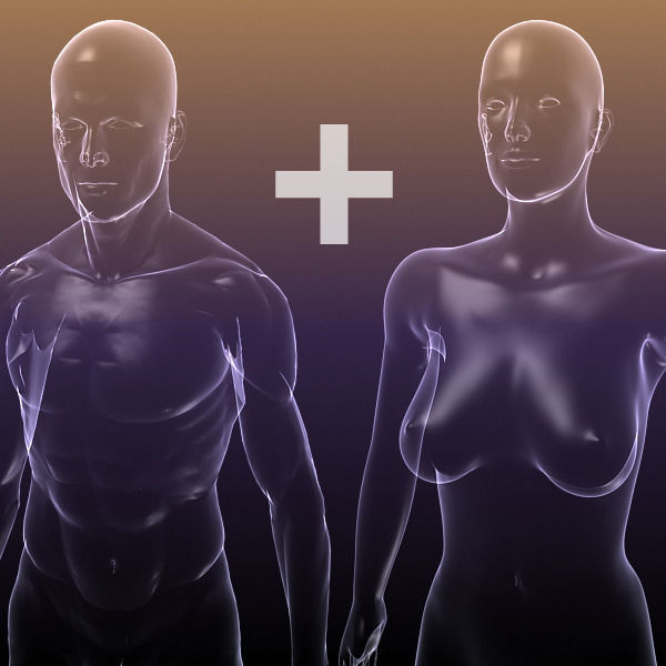 Male And Female Anatomy Transparent Bodies