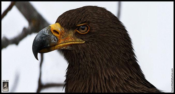 eagle 3d model  3d model obj ztl tga 1