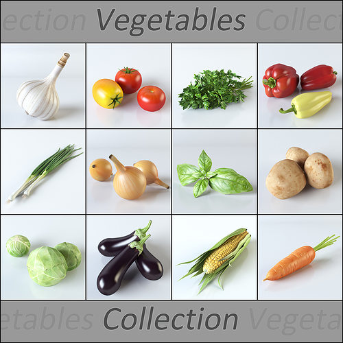 vegetables collection 3d model max obj 3ds fbx mtl mat 1