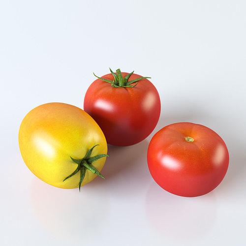 tomatoes 3d model max obj 3ds fbx stl mtl 1