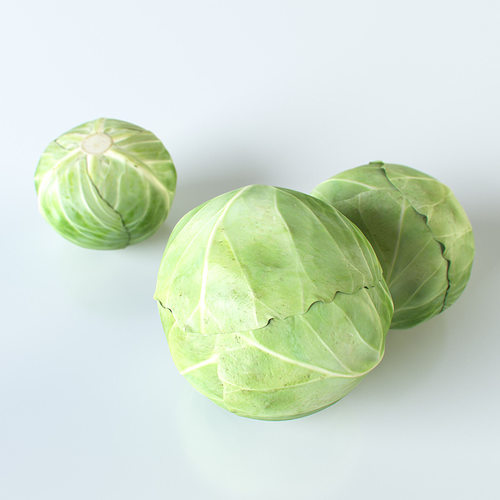 cabbage 3d model max obj mtl 3ds fbx unitypackage prefab mat 1