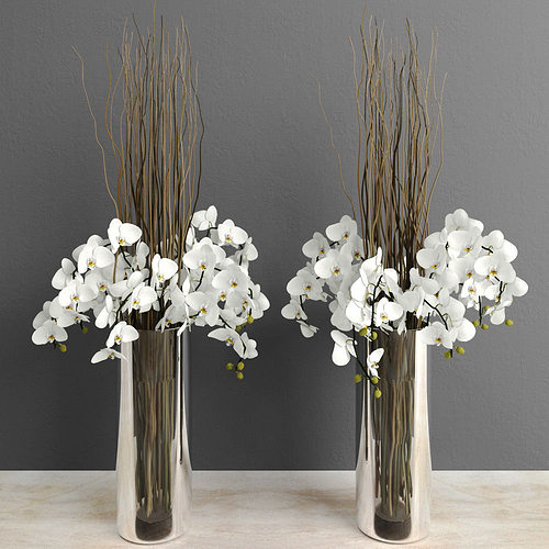 White Orchids With Willow Branches In Tall Glass Vase 3d Model Max